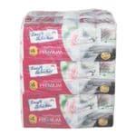 Toilettenpapier 4-lagig, 90 Rollen (9 PAck a 10 Rollen) »Premium«