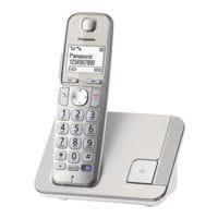 Panasonic Schnurloses Telefon »KX-TGE210GN«