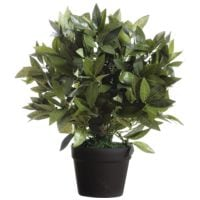 Paperflow Kunstpflanze »Lorbeerbaum« 50 cm