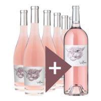 Rindchen's Weinkontor 6er-Pack + 1 Magnum-Flasche Roséwein »2017 Grenache Rosé Vilain Cellier d'Eole«