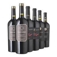 Rindchen's Weinkontor 6-tlg. Wein-Set »Nie mehr ohne Primitivo«