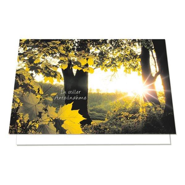 Trauerkarte LUMA KARTENEDITION Anteilnahme, Sonderformat, mit Umschlag, 6 Stück