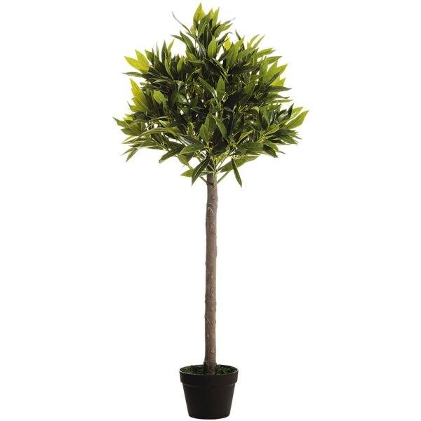 Paperflow Kunstpflanze »Olivenbaum« 125 cm