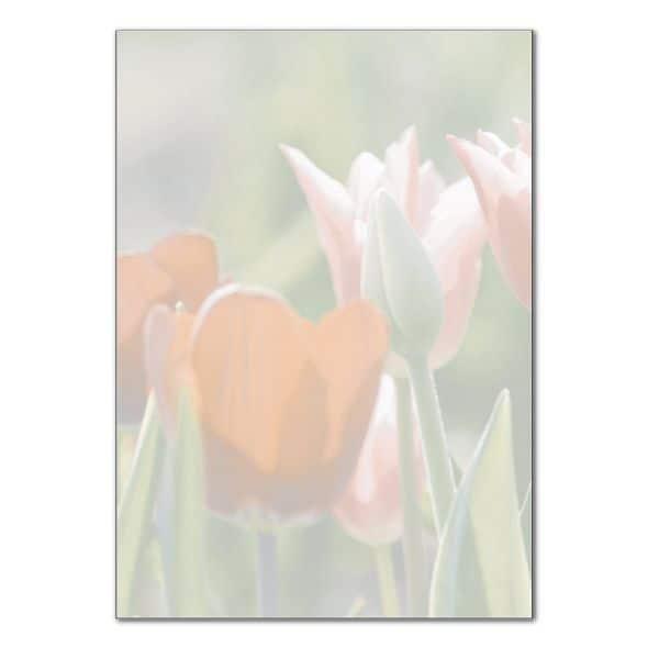 Sigel Designpapier »Spring Fever« DP462