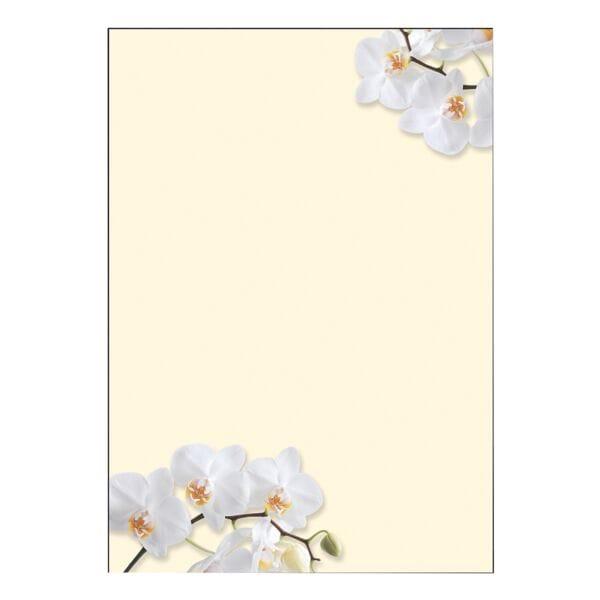 Sigel Motivpapier »White Orchid« DP904