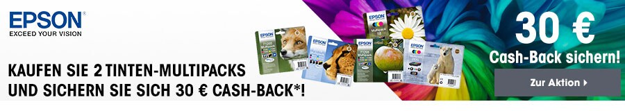 Epson Tinten-Multipacks